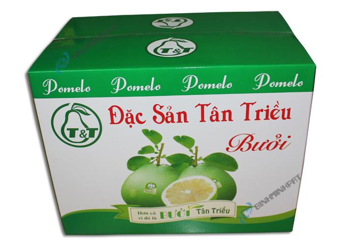 Thùng giấy carton đựng trái cây xuất khẩu